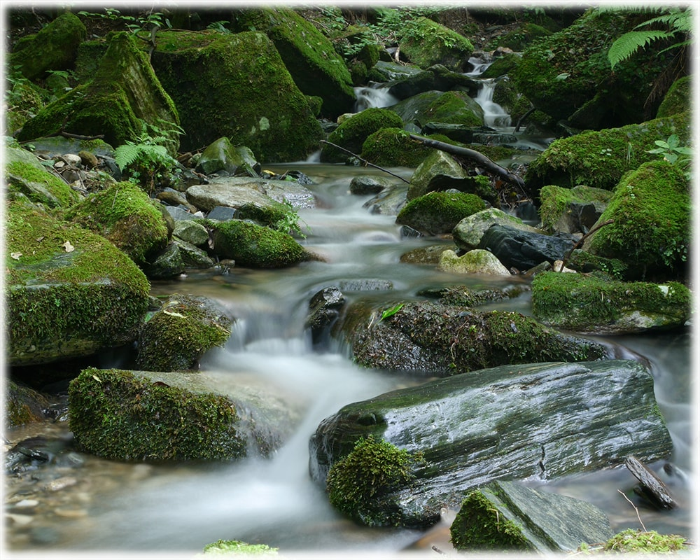 Image of a stream