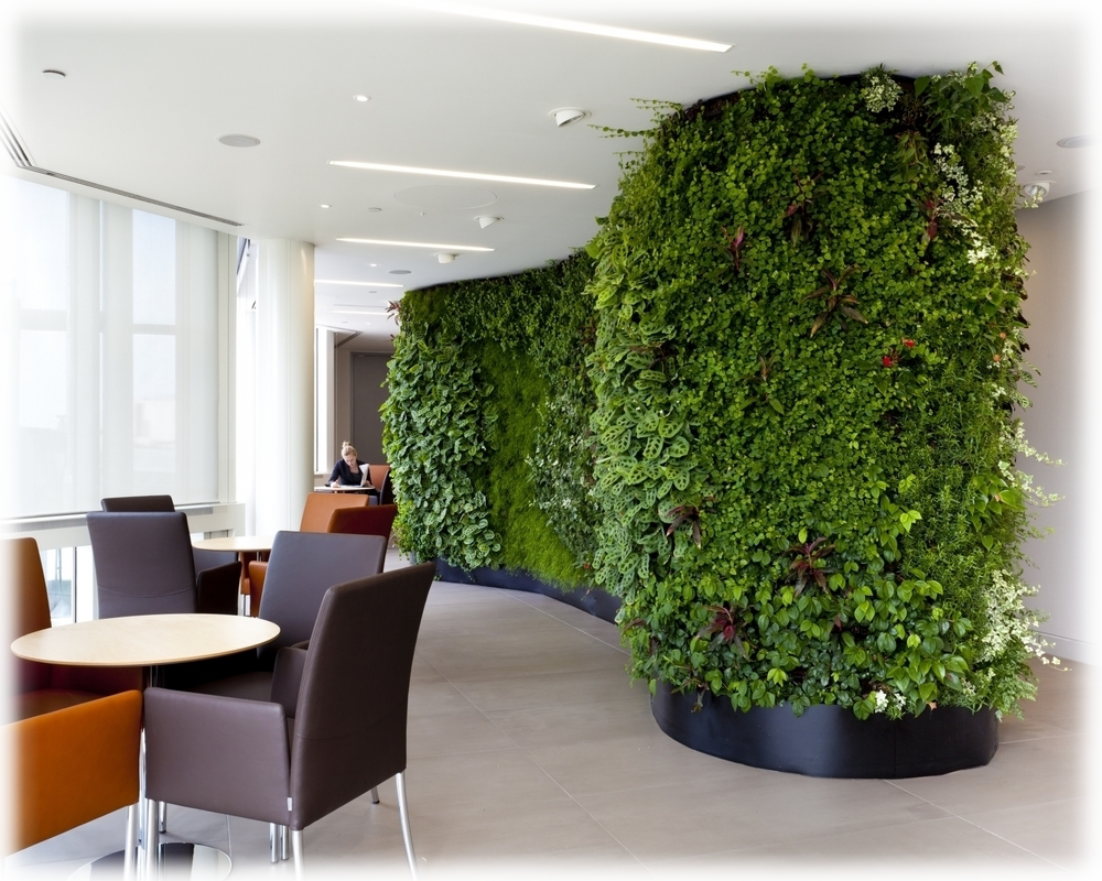 Improve your office Air Quality